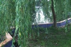 Uferbefestigung_006