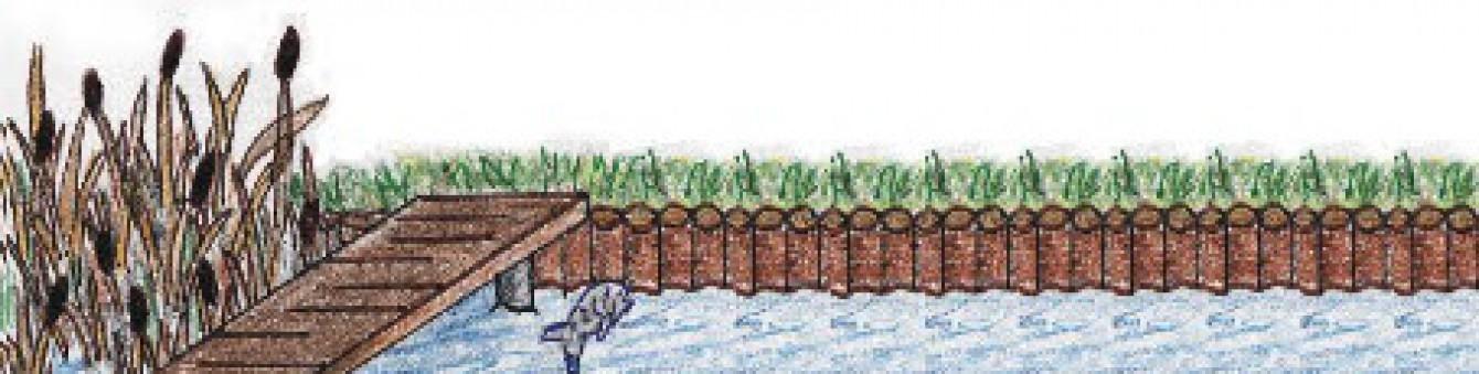 BootsStegbau & Uferbefestigung